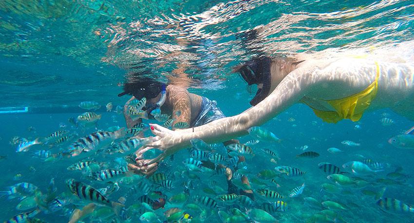 レンボンガン島と周辺の海を満喫できます