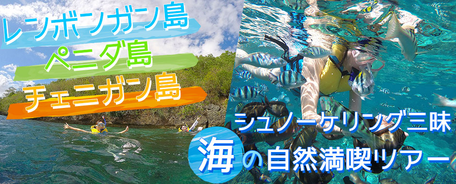 バリ島 レンボンガン島+ペニダ島+チェニガン島 シュノーケリング三昧+マングローブツアー+島内巡り