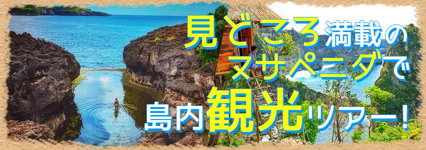 バリ島 ヌサペニダアイランドツアー 特徴
