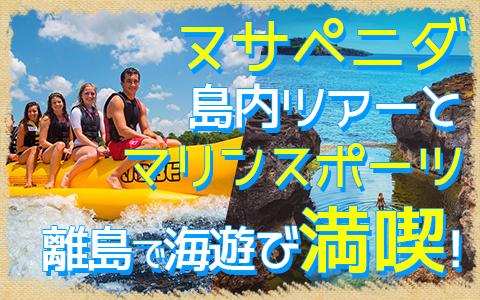 バリ島 ヌサペニダアイランドツアー+マリンスポーツ 特徴