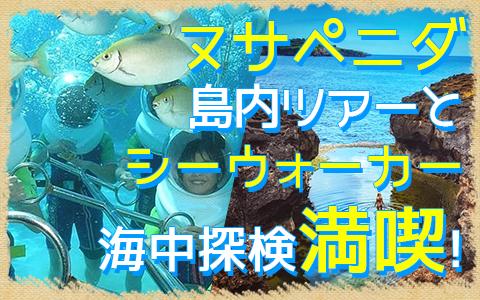 バリ島 ヌサペニダアイランドツアー+シーウォーカー 特徴