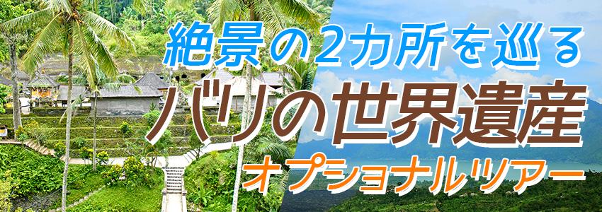 バリ島 バリの世界遺産 パクリサン河川とキンタマーニツアー 特徴