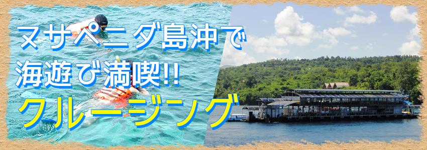 バリ島 クイックシルバー デイクルーズ 特徴