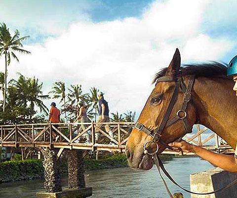 バリ島東部のサバビーチで乗馬体験