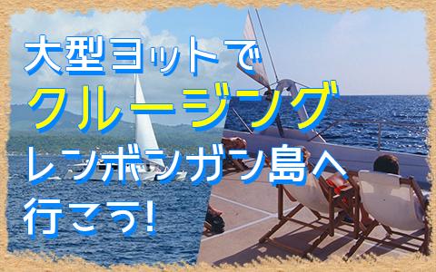 バリ島 セイルセンセーション デイライトクルーズ 特徴