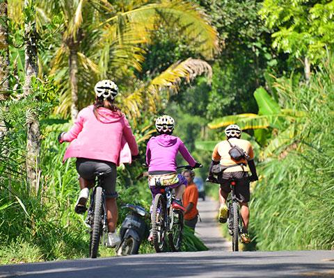 自然を感じながら走るサイクリング