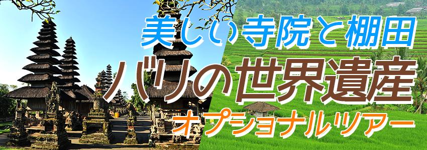 バリ島 バリの世界遺産 タマンアユンとライステラスツアー 特徴