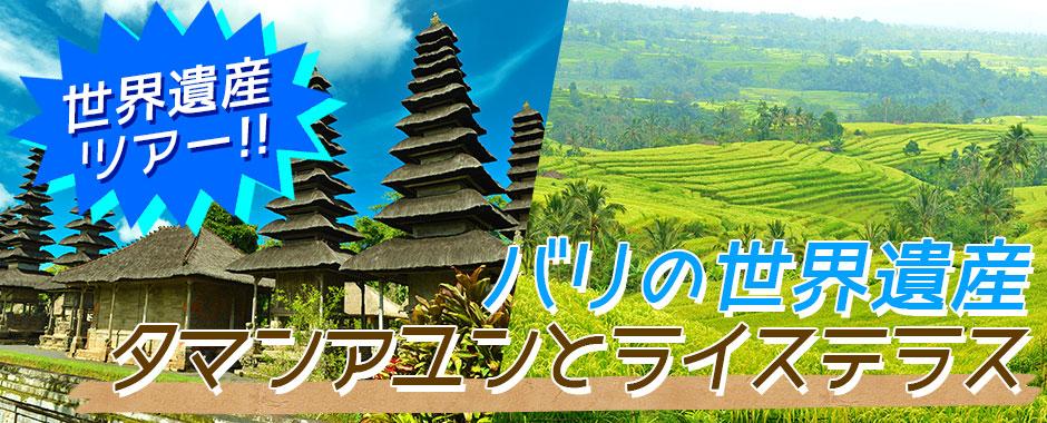 バリ島 バリの世界遺産 タマンアユンとライステラスツアー