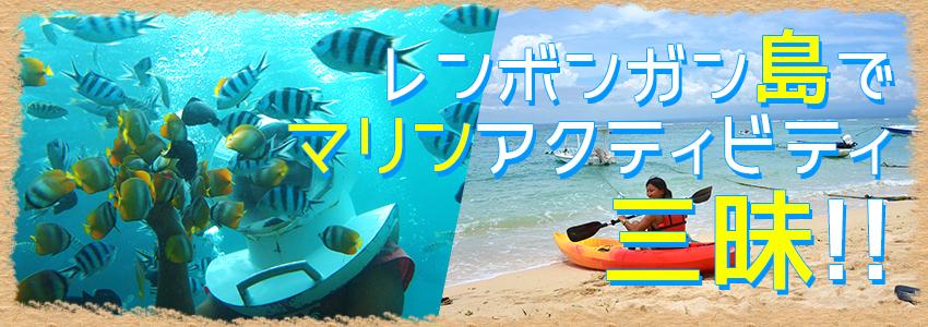 バリ島 トレジャーハント with シーウォーカー 特徴