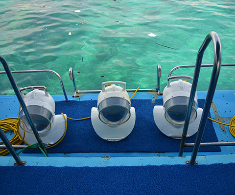 レンボンガン島で海遊びを満喫