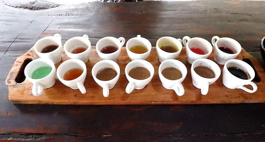 様々な種類のコーヒーの試飲を楽しめます
