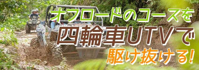 バリ島 BALI UTVアドベンチャー 特徴