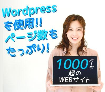 バリ島 WEBサイト販売&レンタル 画像