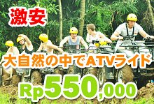 バリ島 観光Pertiwi Quad Adventure ATVライド