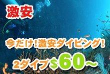 バリ島 観光ヒロチャン×バリビューダイブセンター 激安ダイビング
