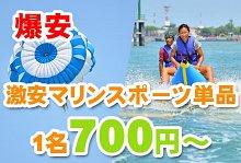 バリ島 観光クレイジー特価 マリンスポーツ単品(バリドルフィン社)