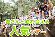 バリ島 観光バリ島 厳選アクティビティ ソベック サイクリング