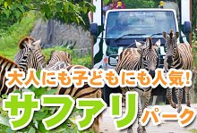 バリ島 観光バリ キャメル アドベンチャー