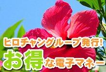バリ島 観光ヒロチャン 電子マネー お得だね!