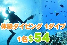 激安ヌサドゥアde体験ダイビング(バリ コーラル社)