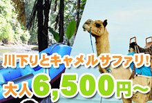 バリ島 観光ウブド散策とラフティング+キャメルサファリ