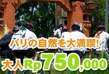 バリ島 観光バリ島 厳選アクティビティ アユンリバー サイクリング