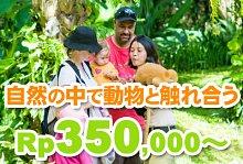 バリ島 観光バリ島 厳選動物ふれあい バリ動物園(バリズー)