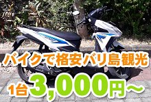 バリ島 厳選カーチャーター バイクチャーター