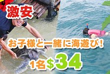 バリ島 観光野外学習 亀の島とシュノーケル BALI CORAL社