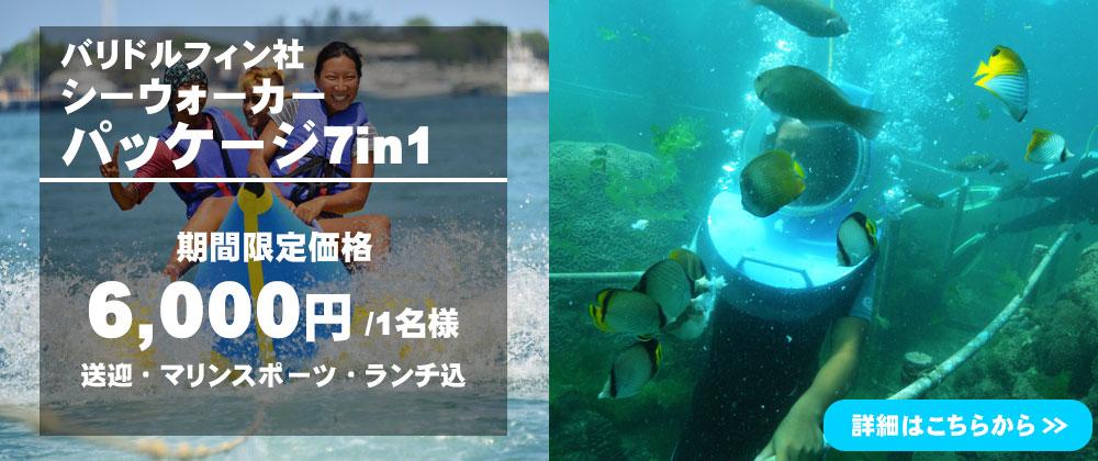 バリ島 シーウォーカー・パッケージ7in1 バリ ドルフィン社