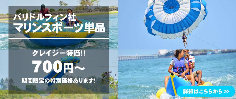 バリ島 マリンスポーツ単品(バリドルフィン社)